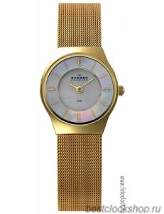 Наручные часы Skagen 233XSGG