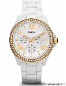 Наручные часы Fossil AM 4493 / AM4493