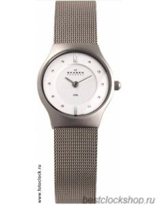 Наручные часы Skagen 233XSSS1