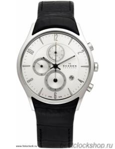 Наручные часы Skagen 329XLSLC