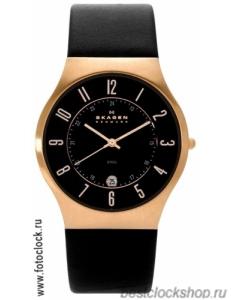 Наручные часы Skagen 233XXLRLB