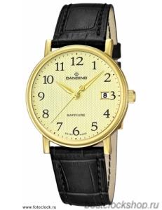 Наручные часы Candino C4489/1