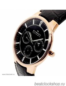 Наручные часы Skagen 331XLRLB