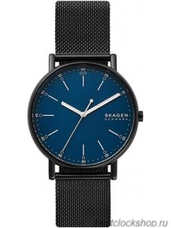 Наручные часы Skagen SKW6655