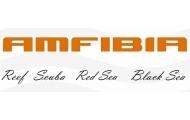 Новая AMFIBIA скоро в продаже